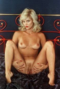 Question traci lords ginger lynn peter north charming