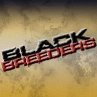 Black Breeders
