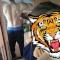 Fire_Tiger