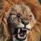 lionheart1974