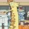 ReverceGiraffe