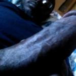 BigDaddyNick6969