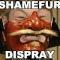 SHAMEFURSDISPRAYS