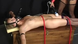 Interracial Bound - Scene 3  nipple clamps spanking ridding girlongirl leash femdom asian vibrator collar rope stockings pornhub.com dildo muzzle