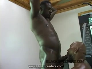 Big Black Cock down my Throat