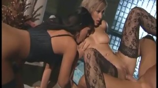 Glamour babes wearing thigh high stockings and lingerie sharing a cock