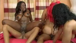 black orgy pornhub Best Oral Series:  Massive Facials; Best Orgy/Gangbang Release: Gangbanged 4; Best Original  Song: .