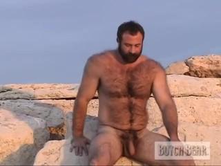 Erotic Spotlight Bears