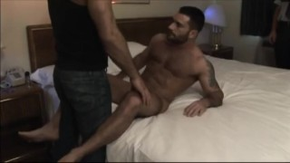 Muscle Bear Motel  muscle bear gloryholes hairy