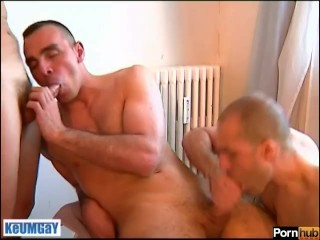 Guys: it's time to suck our assistant! Go ! (Hunk guys with huge cocks!)