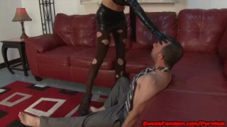 Cadence Lux the Dominatrix Compilation HAND JOB PEGGING FACE SITTING QUEEN  ball squeezing strapon guy ass worship girl strapon guy pegging face sitting strapon fetish handjob kink smothering sweetfemdom ballbusting cbt
