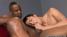Pizza, Orion And Dru Interracial Blowjobs
