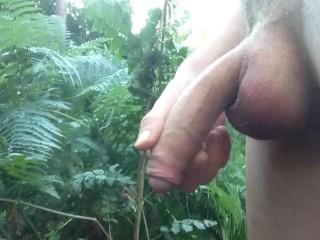 huge cunt lips