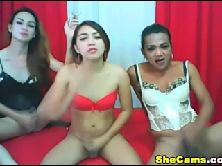 Horny Shemale Trio Jack Off