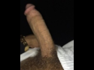 Dick Vid