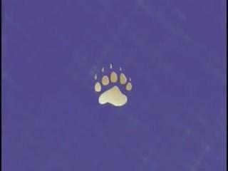 Bear Paws