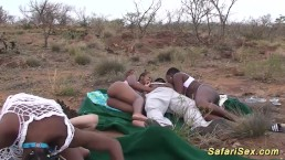 african safari groupsex fuck o