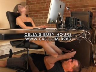Celia's Busy Hours - www.c4s.com/8983/16365392