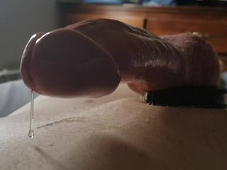 Dripping plump cock throbs with heartbeat