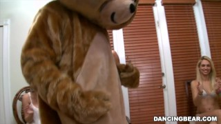 The Muthafucking Dancing Bear in the House! Watch out! db9376