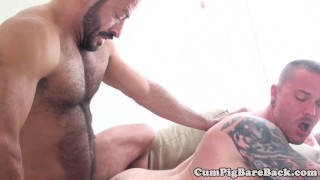 Bareback bear cockridden by tight horny cub