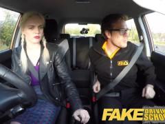 Fake Driving School - teaching teen leaners - 100% pass rate