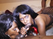 Two hot black babes in a big dick orgy