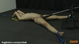 Lyra is Bound Helpless, Spread