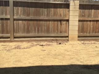 Pissing in my backyard