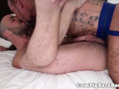 Grey wolf assfucking a tight butthole