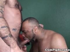 Black wolf assfucking a muscular bear