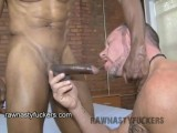 download video xxx gay paddy and thomad