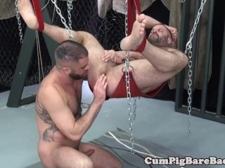 Muscly stud dominates suspended bear