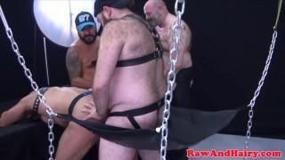 Chubby mature bears pounding asses bareback