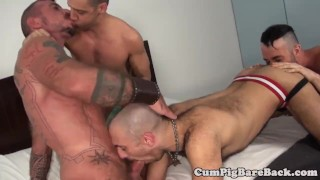Grey wolf assfucking twinks in foursome