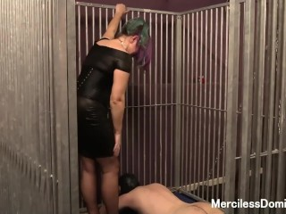 Rough Double Trampling in Cage -