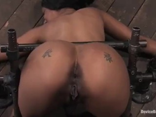 Bond in Doggy Style Position